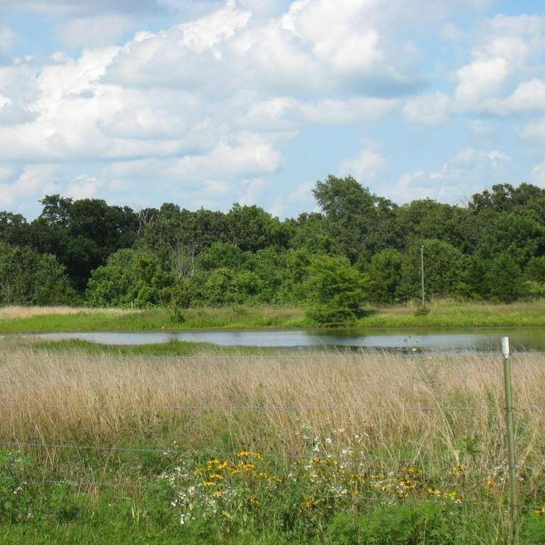 Finnigan farms Pond.JPG