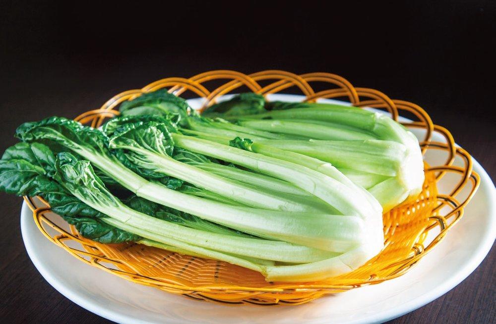 Shanghai brassica cabbage