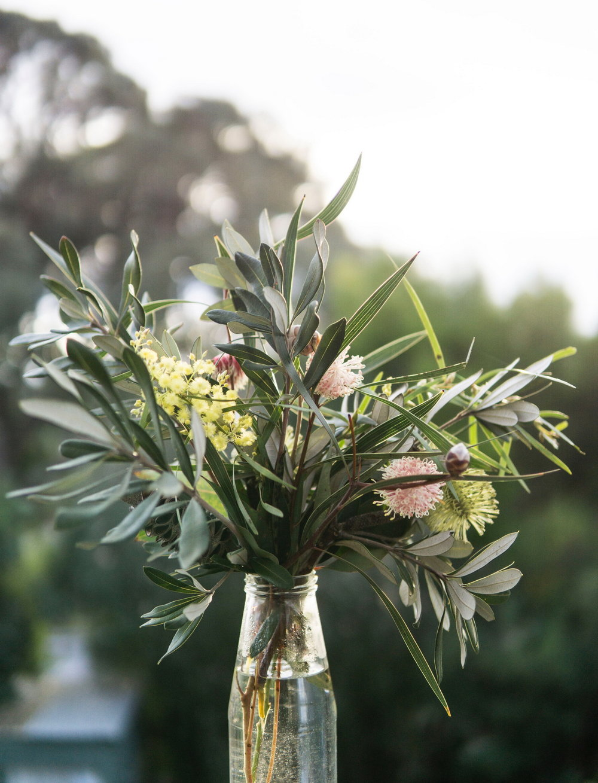 arrangement-australian-branch-1058964.jpg