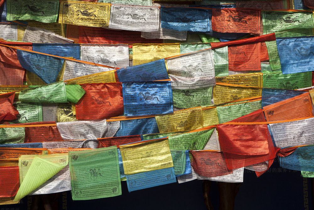 PrayerFlags2012©RAdams.jpg