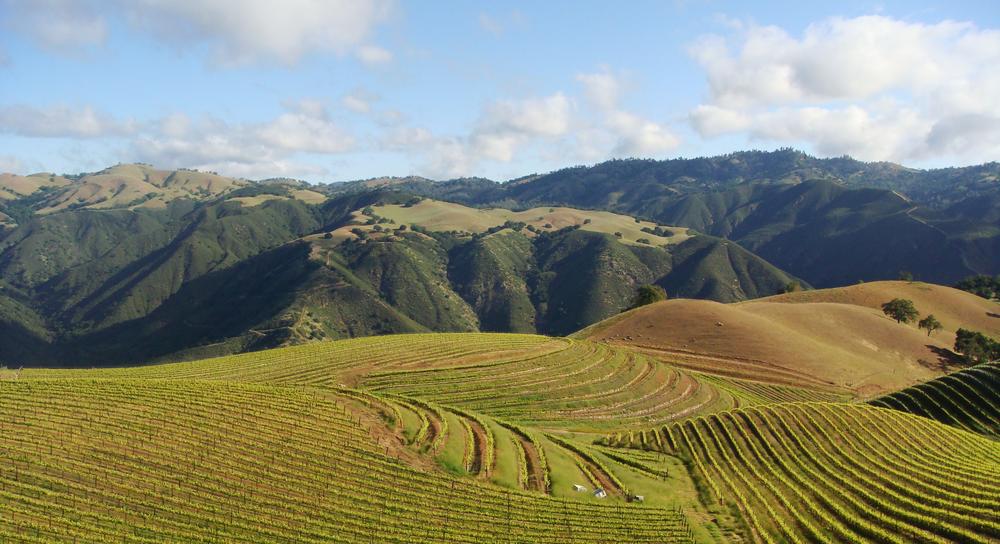 carmel-valley-landscape.png