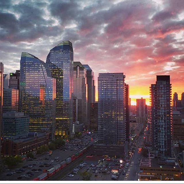 A beautiful fall sunrise captured in downtown Calgary. #paradicesocial | by: @phjlljps • • • • #fall #fall🍁 #fallvibes #fallseason #fallcolors #falltime #fallleaves #fallweather #mountains #mountainstories #mountainscape #mountainscenery #alberta #albertacanada #albertalife #explorealberta #travelalberta #albertaviews #calgary #calgaryalberta #calgarylife #calgarybuzz #calgaryphotographer #calgaryisbeautiful #yyz #canadiancreatives #explorecanada #landoflivingskies #canada