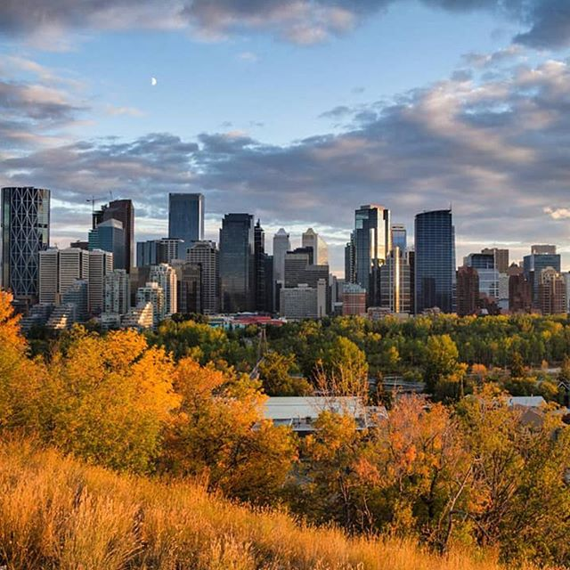 It's hard to find a bad view in Calgary during the fall.  All the beautiful colours against the city skyline is never a bad sight. #paradicesocial | by: @arash_wanders • • • • #fall #fall🍁 #fallvibes #fallseason #fallcolors #falltime #fallleaves #fallweather #mountains #mountainstories #mountainscape #mountainscenery #alberta #albertacanada #albertalife #explorealberta #travelalberta #albertaviews #calgary #calgaryalberta #calgarylife #calgarybuzz #calgaryphotographer #calgaryisbeautiful #yyz #canadiancreatives #explorecanada #landoflivingskies #canada