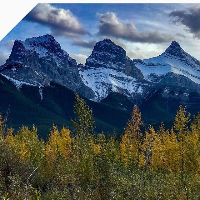 Our last photo of this collection again shows of the beauty of the rockies in the fall season.  We never get tired of looking at mountain photos. #paradicesocial | by: @robertfrank87 • • • • #fall #fall🍁 #fallvibes #fallseason #fallcolors #falltime #fallleaves #fallweather #mountains #mountainstories #mountainscape #mountainscenery #alberta #albertacanada #albertalife #explorealberta #travelalberta #albertaviews #calgary #calgaryalberta #calgarylife #calgarybuzz #calgaryphotographer #calgaryisbeautiful #yyz #canadiancreatives #explorecanada #landoflivingskies #canada