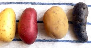 Patates variées