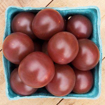 Tomate cerise noir