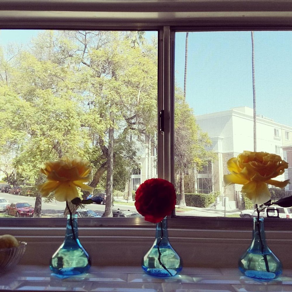 Home Staging | Flowers in the window