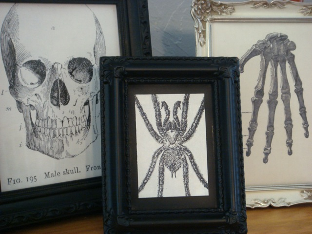 Print out black and white images of spiders and skeletons.  Use the frames you have already in your home or go to your local arts and crafts store to get some affordable black and white frames.