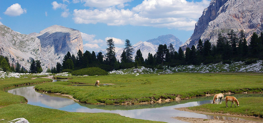 altabadia-pferde-landschaft-05.jpg