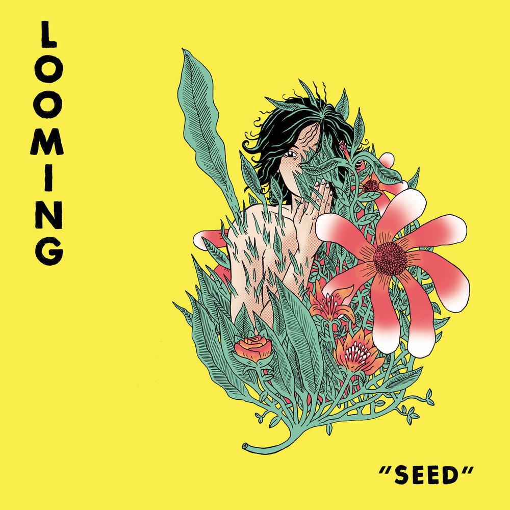 Seed album art.jpg