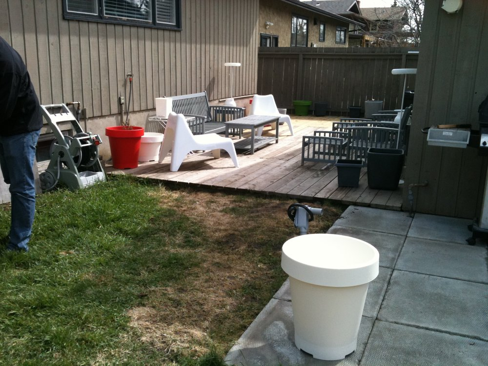 backyard before (home 1)