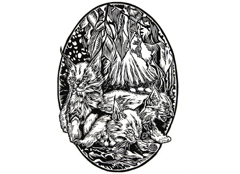 Lino-printed artworks - Please visit Edition Prints:http://www.editionprints.com.au/artists/category/61-glenn-smith