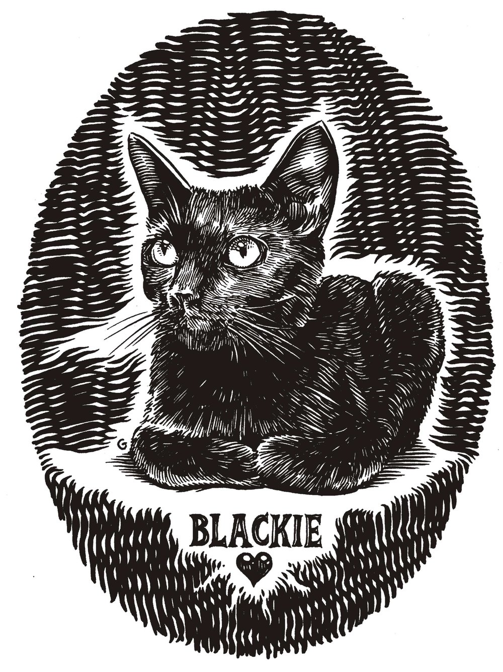 blackie cat.jpg
