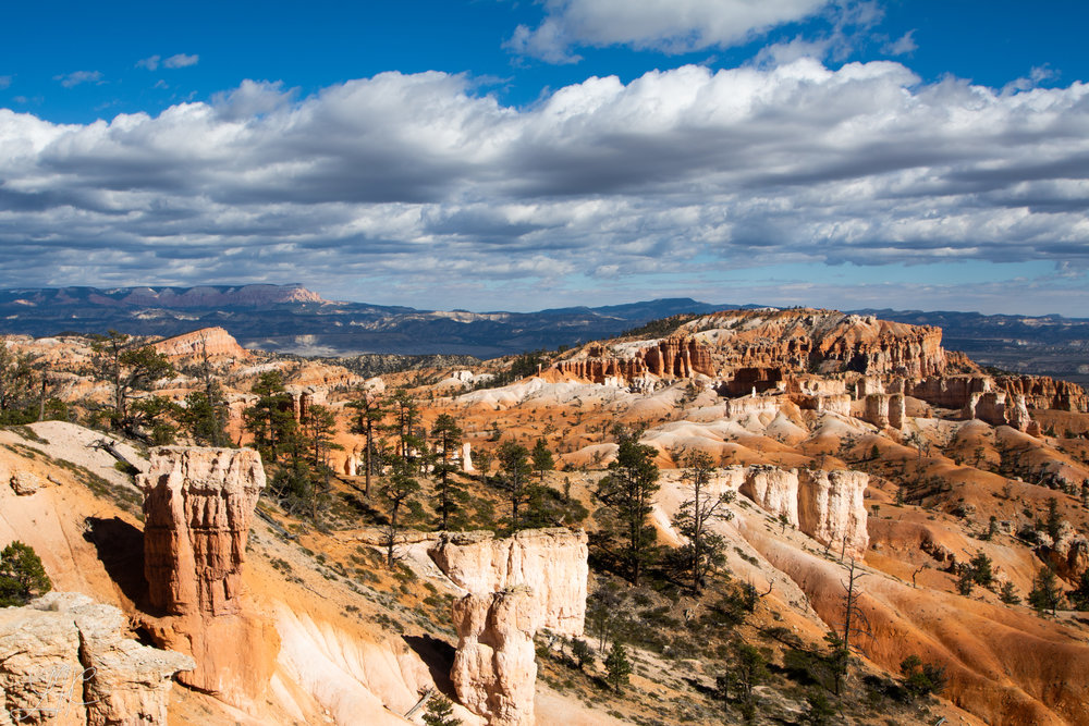 Layers of Bryce, Bryce Canyon National Park