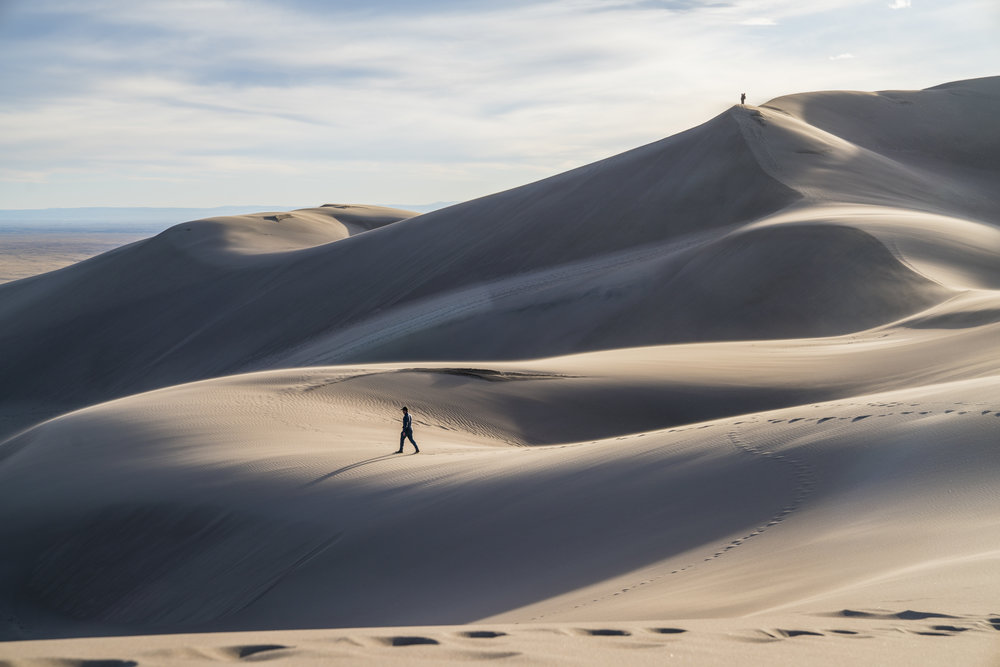 Dunes Feral 41.jpg