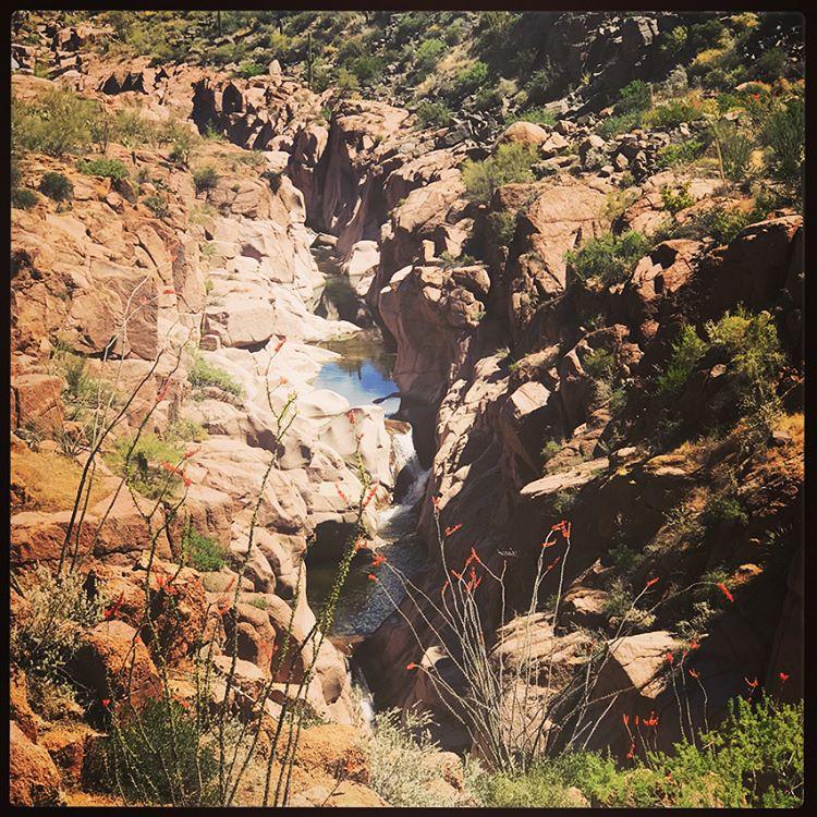 Salome Creek