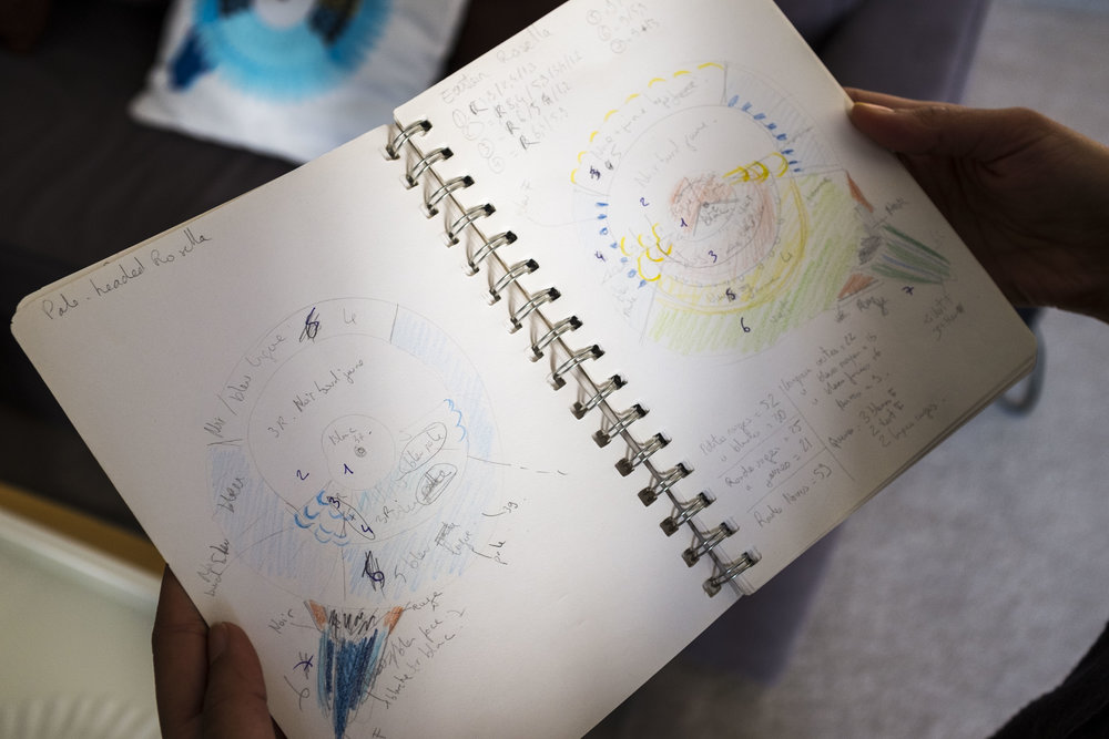 Les dessins avant la réalisation des perroquets ronds.