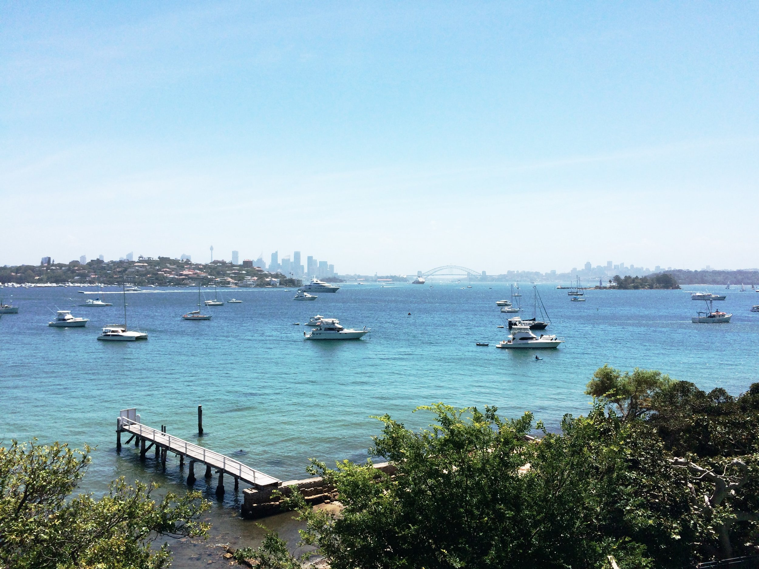 View of Sydney from Vaucluse