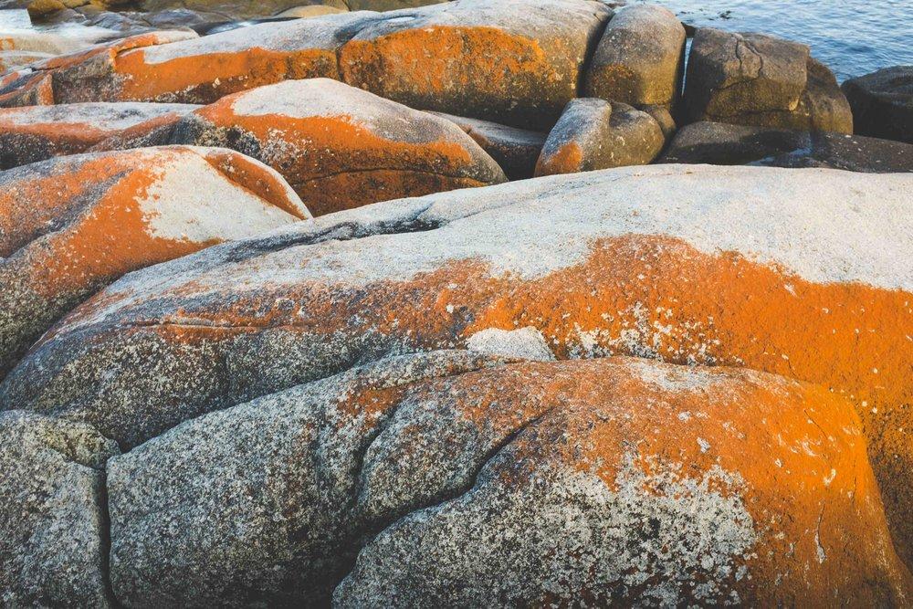 Some rocks at the Bay of Fires. Photo: Marine Raynard