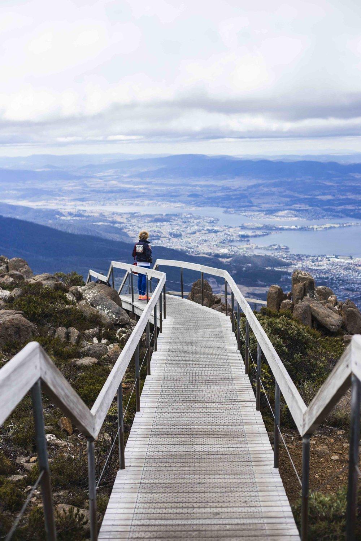 View from the walk at Mount Wellington. Photo: Marine Raynard