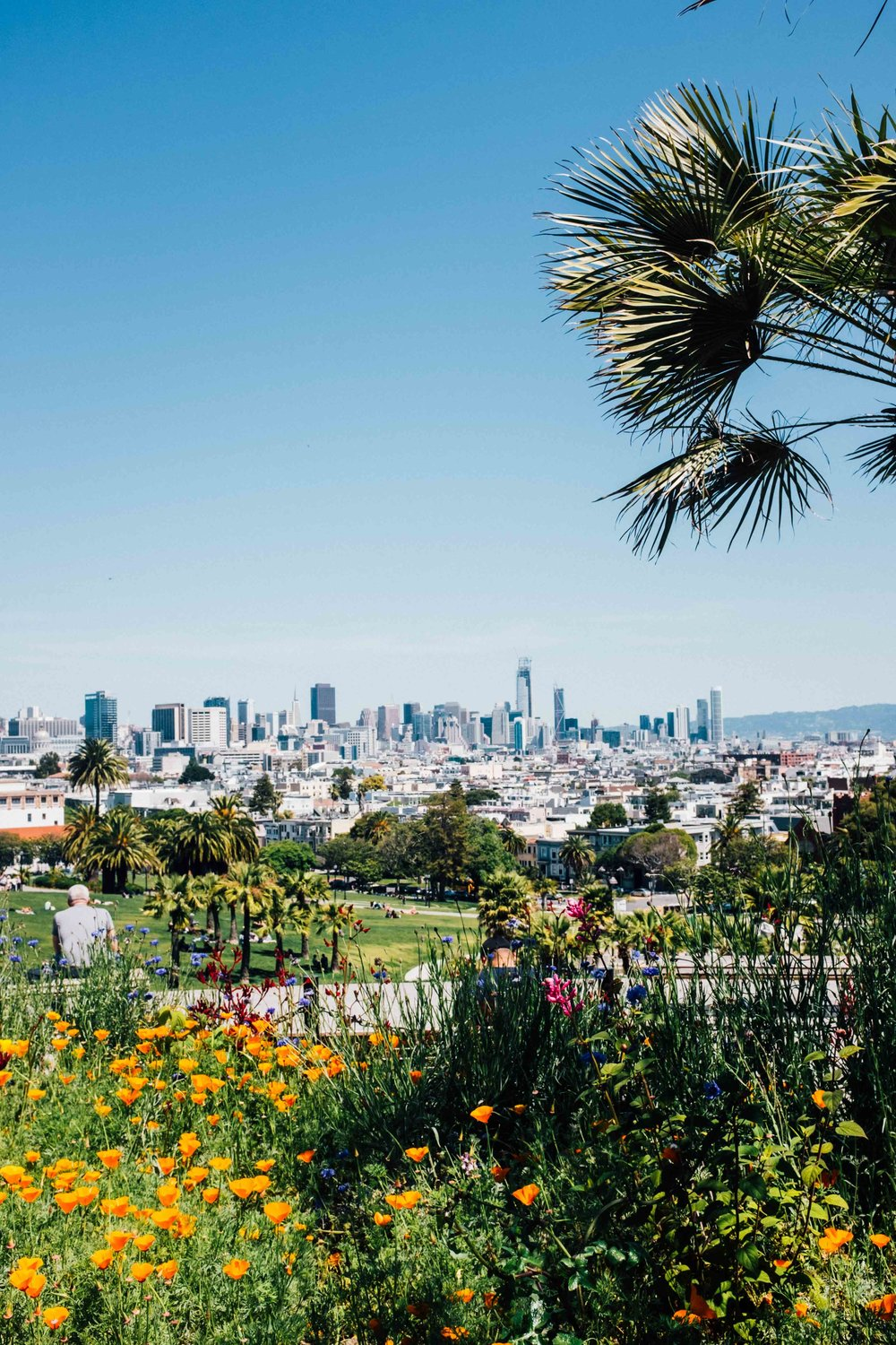 The wonderful view from Mission Dolores Park. Photo: Marine Raynard
