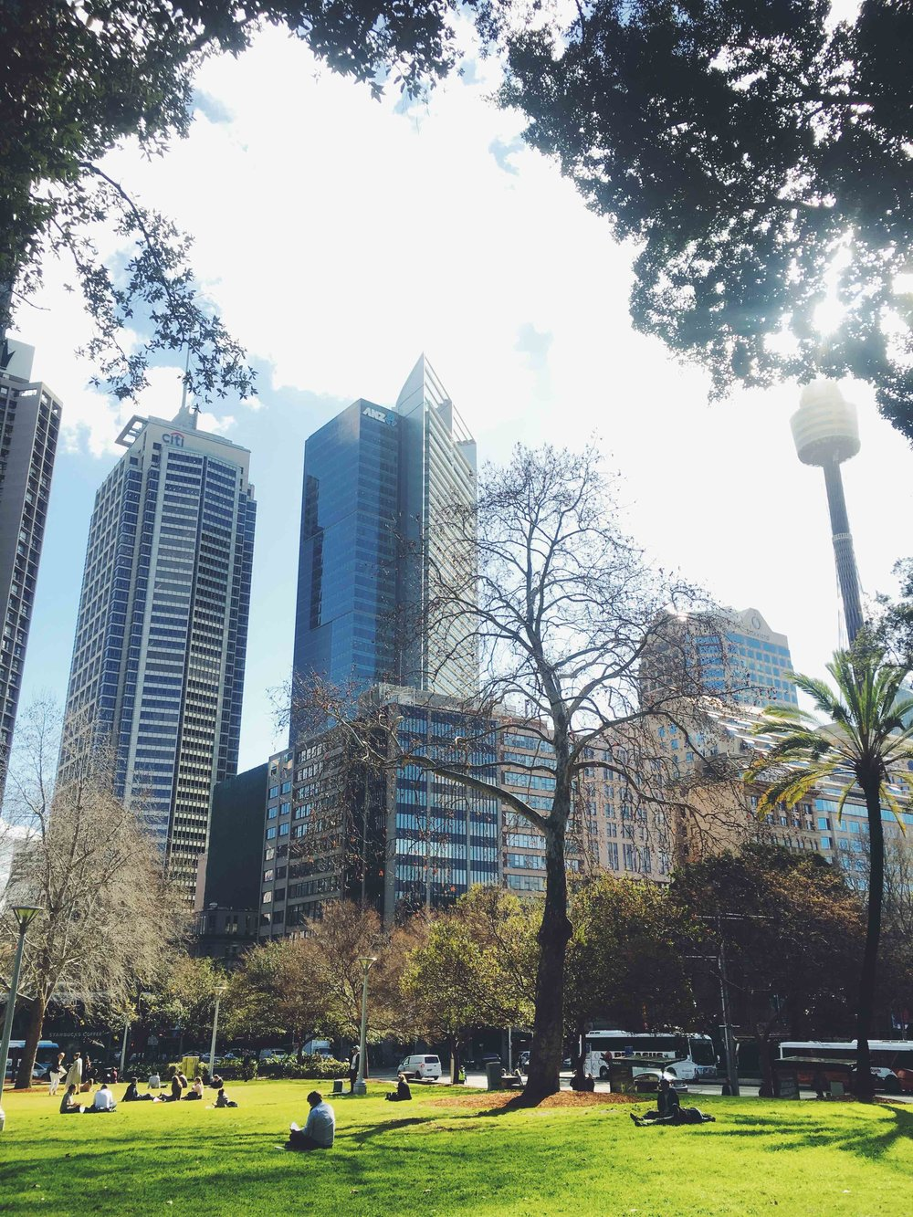 Lunch time at Hyde Park, in Sydney CBD during the Winter months. Photo: Marine Raynard