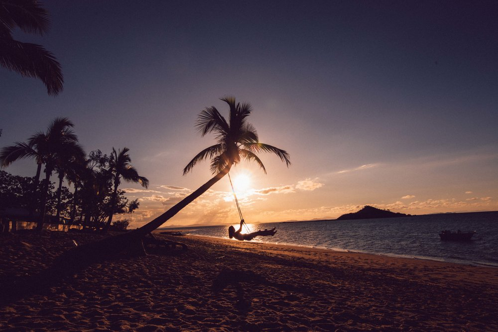 The Palmtree swing near Hideaway Bay in Queensland.