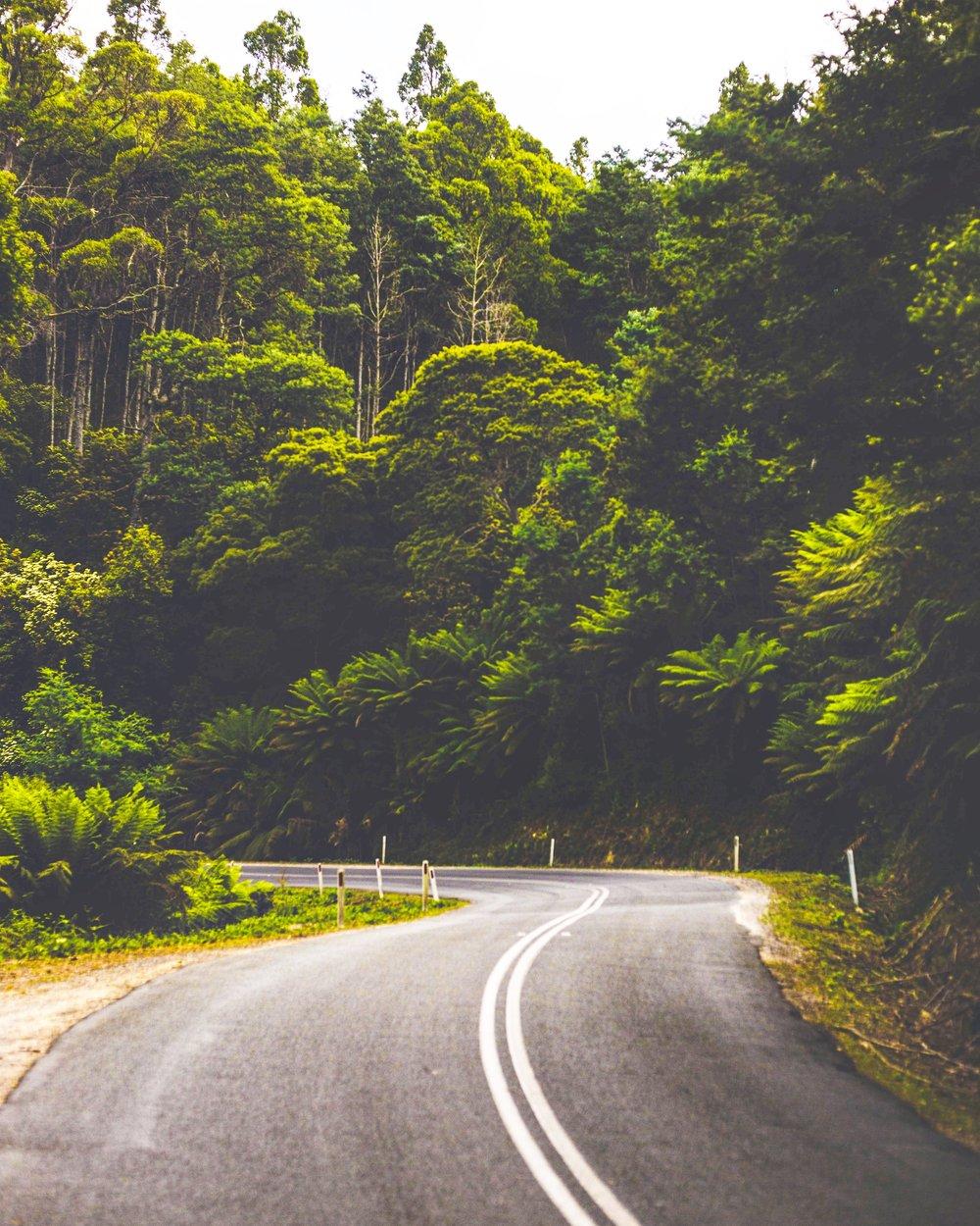 tasmania-road-trip.JPG