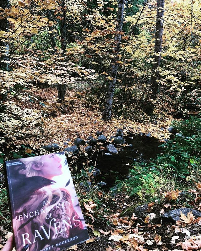 My reading spot today. Finally able to get back to this book after the big move to Oregon 🍁 . . . . . #bookstagram #bookblogger #bookish #bibliophile #booknerd #booklover #books #bookaddict #reading #instabook #bookaholic #instabooks #fall #oregon #enchantmentofravens #margaretrogerson