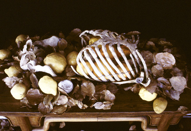 Still-life with Quinces & Skeleton, 2001-05, back-lit colour transparency, 35 x 59 cm