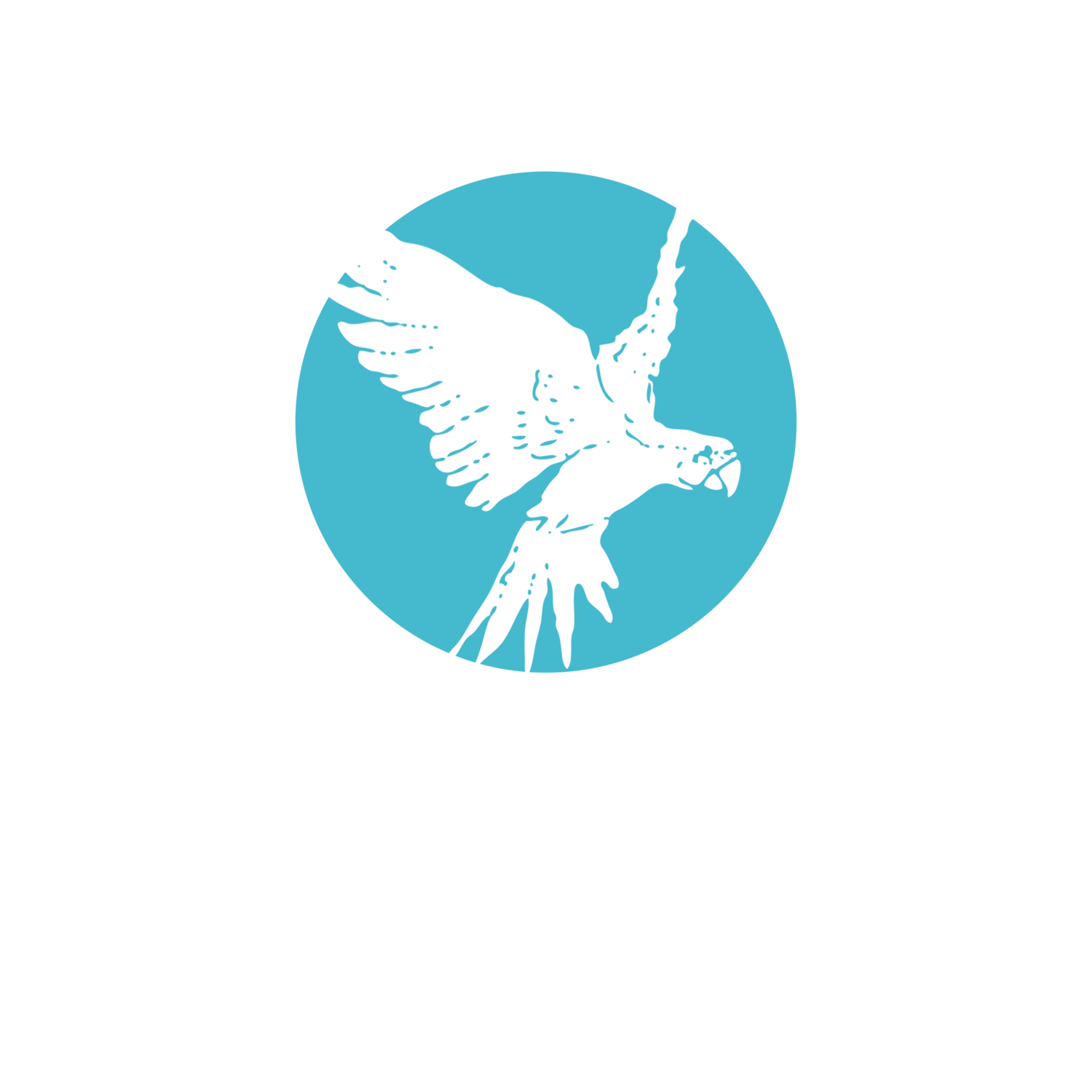 Following Nature Facilitation