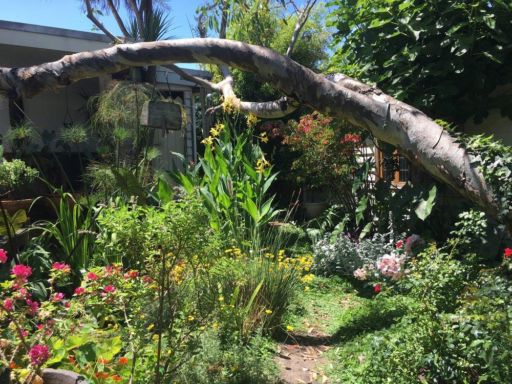 0430 965 166 : Landscape Architecture U0026 Garden Design Melbourne :: Garden  News :: Small Garden Design