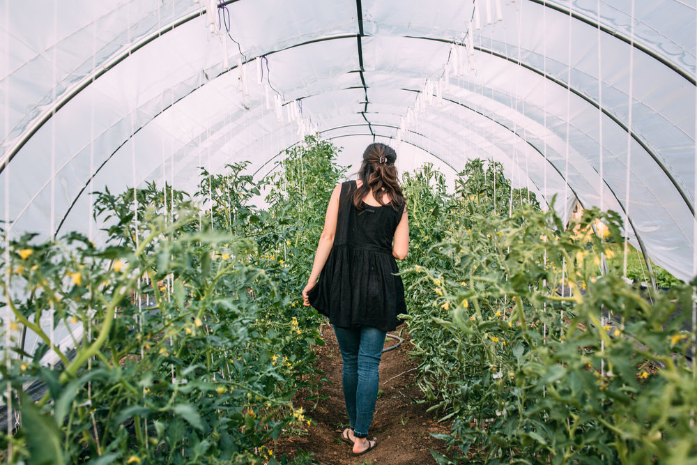 Shiloh Farm-72.jpg