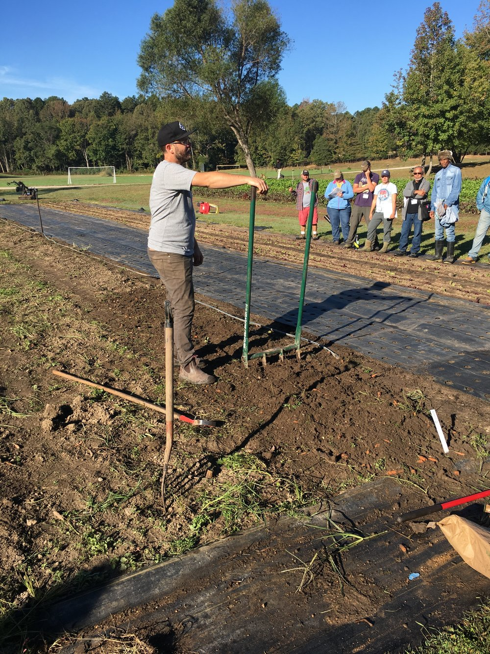 Curtis Stone demonstrating the use of broad forking to airate soil in beds.