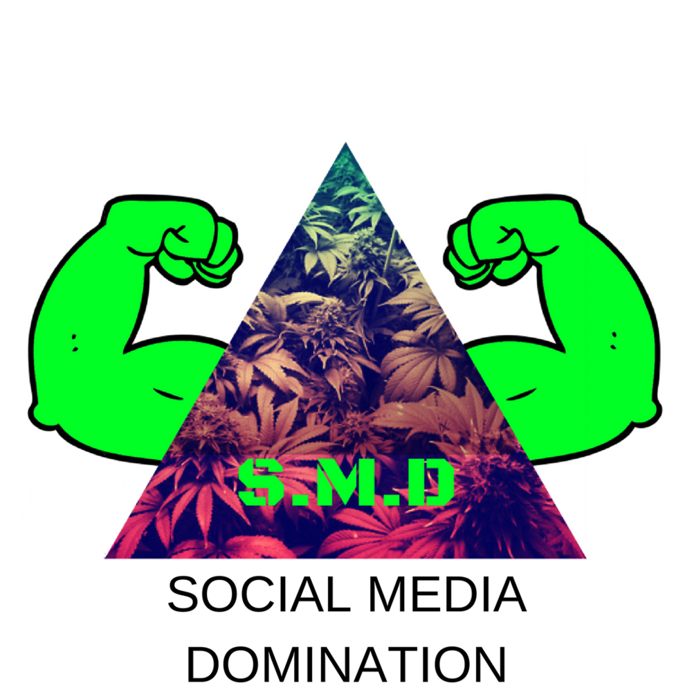 social-media-domination.png
