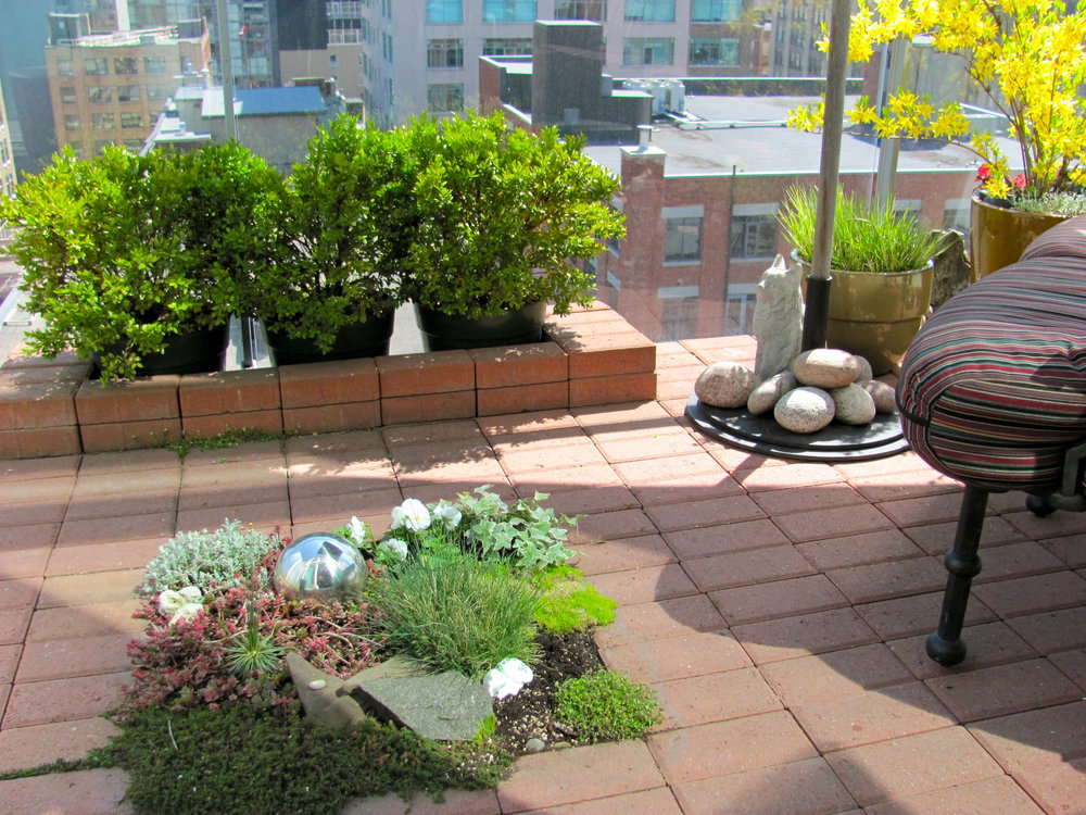 Zen Garden at 388 Richmond St W, #1111, Luba Beléy.JPG