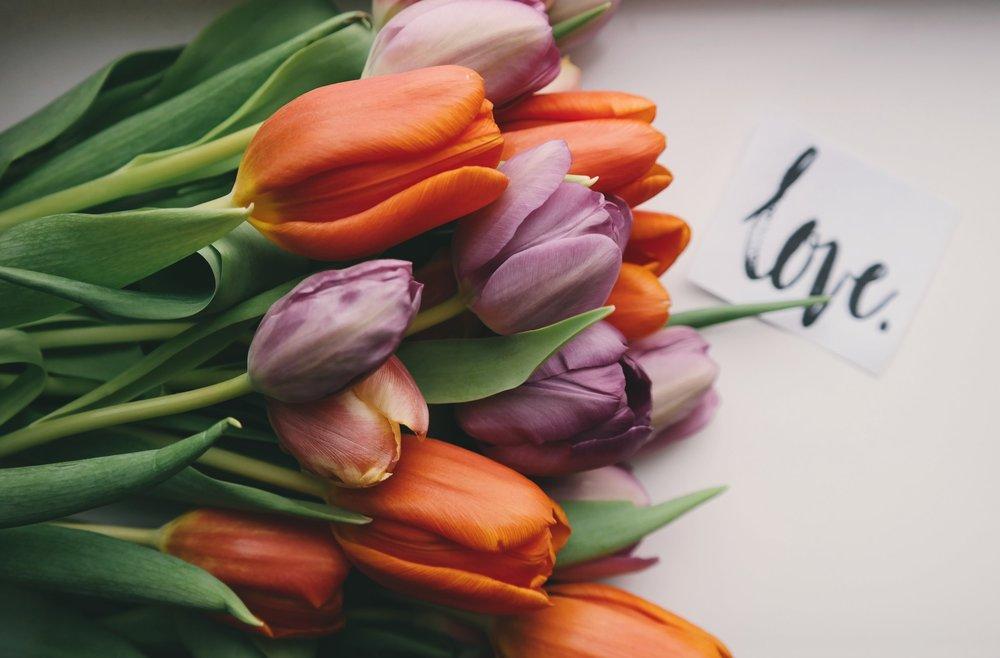 Tulips by Brigitte Tohm