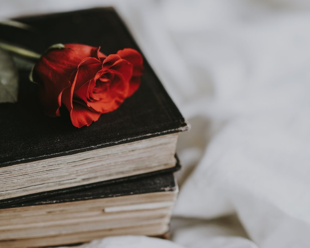 Books and a red rose by Annie Spratt