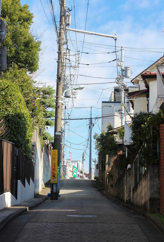 Tokyo Travelogue, Yoyogi Neighborhood