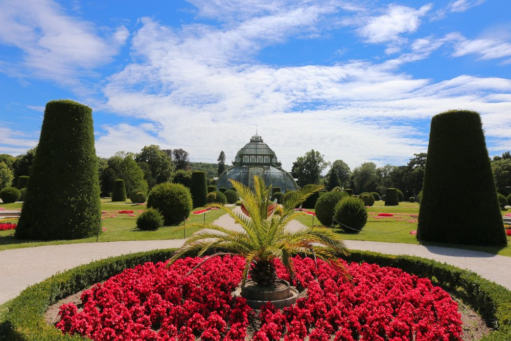 Schonbrunn Palace Vienna — The palm gardens