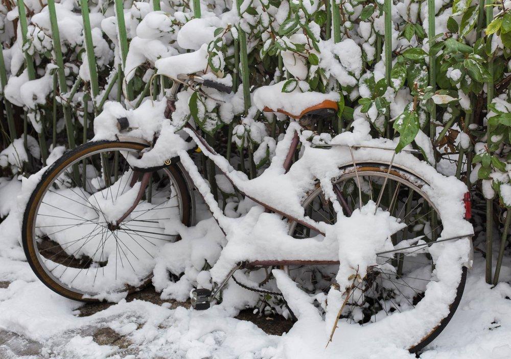 20180228_WinterWonderland_04.jpg