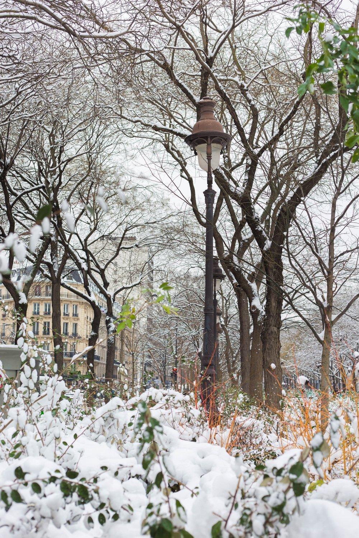 20180228_WinterWonderland_05.jpg