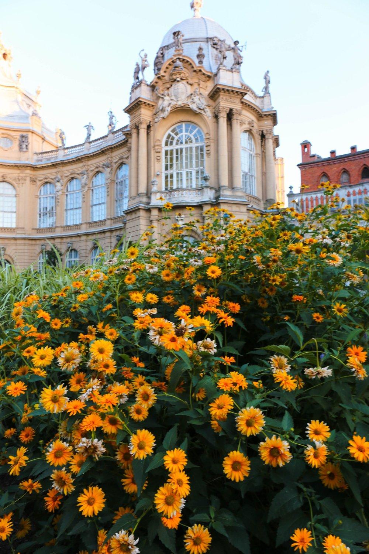 budapest Vajdahunyad Castle