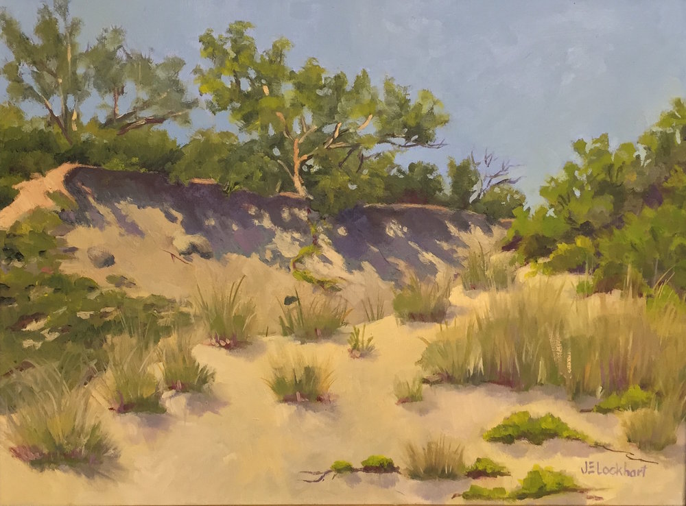 Shadows in the Dunes