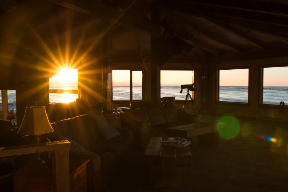 The Guest Lounge at sunrise.
