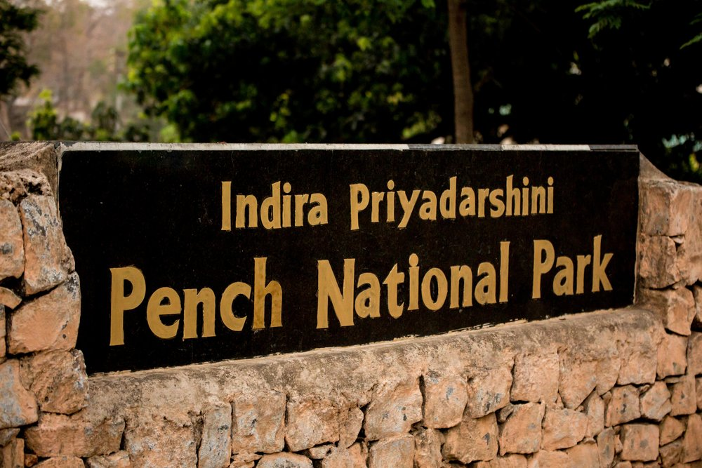 Pench Tiger Reserve (1 of 1).jpg