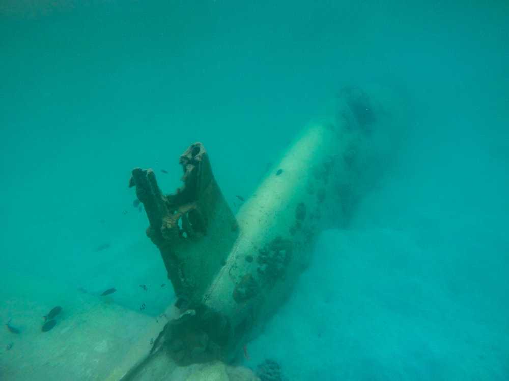 Snorkel on a World Ware 2 Plane Wreck (Aft Fuselage and tail)