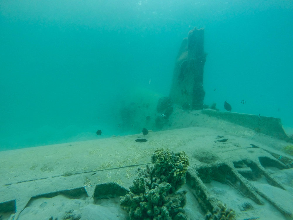 Snorkel on a World Ware 2 Plane Wreck (Tail)