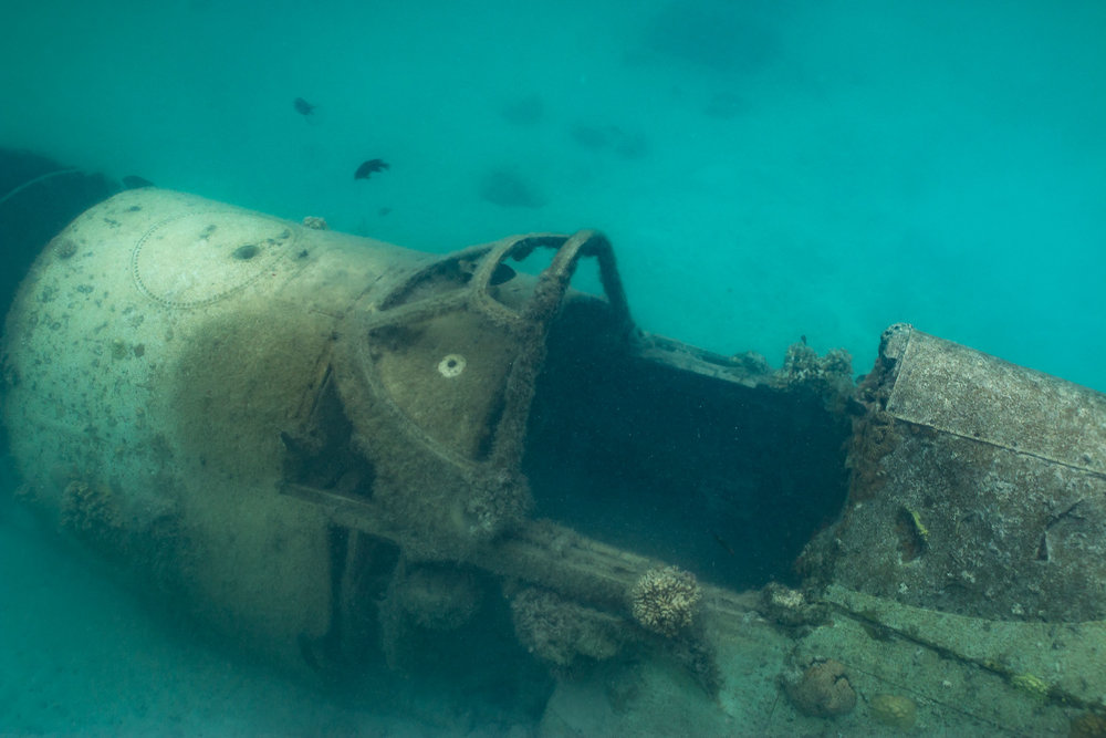 Photograph a World Ware 2 Plane Wreck in water (Looking down on cockpit from side) (2)