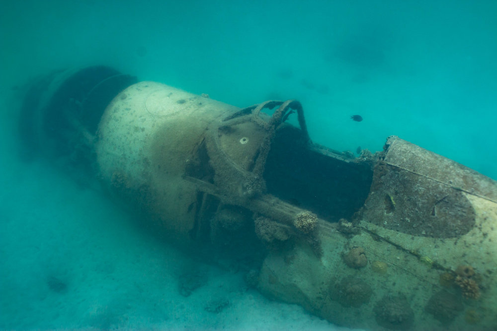 Photograph a World Ware 2 Plane Wreck in water (Looking down on cockpit from side)